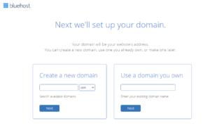 Bluehost TrendyRead  Domain